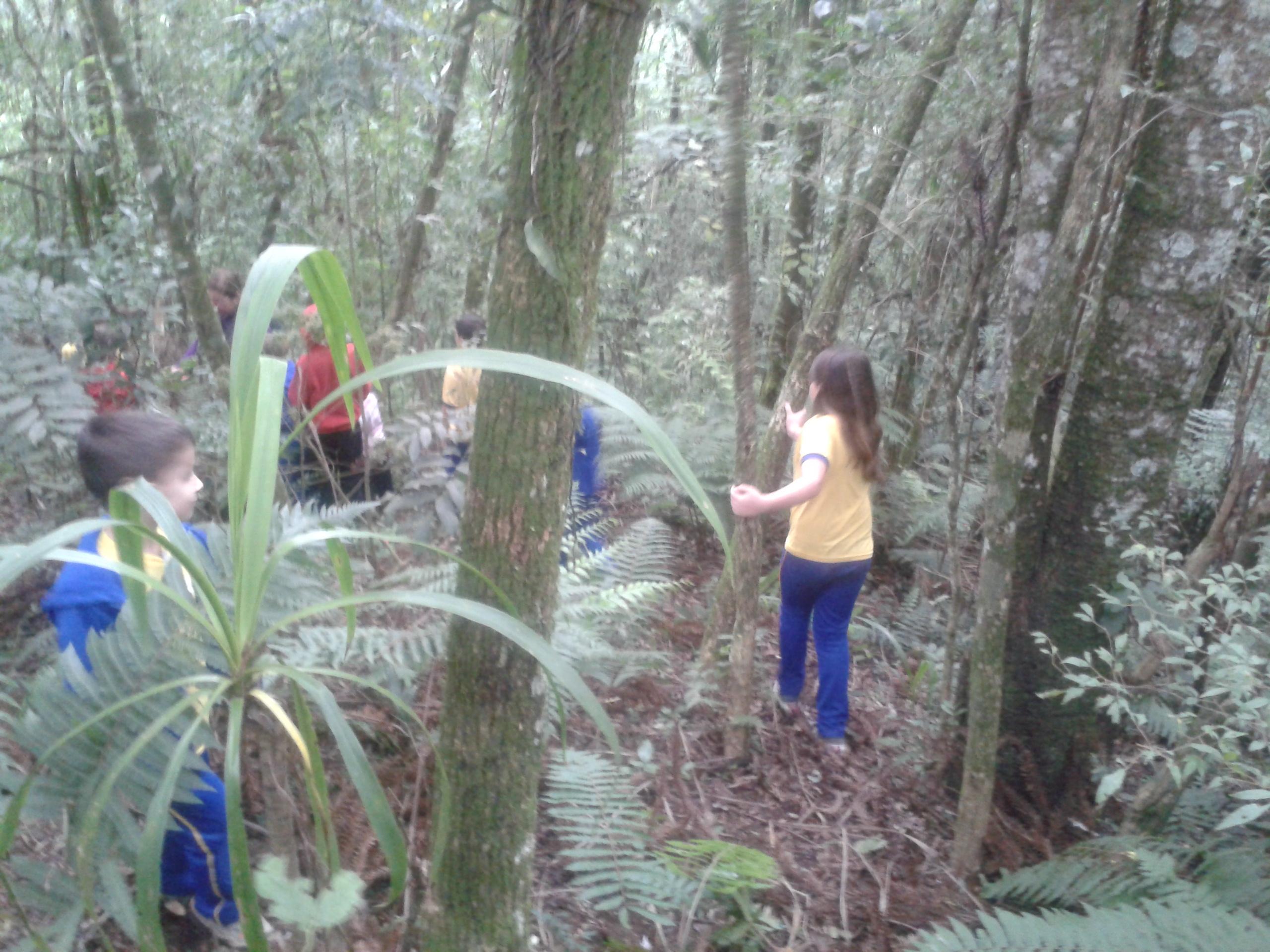 Alunos visitam área de preservação ambiental na comunidade em que está inserida.