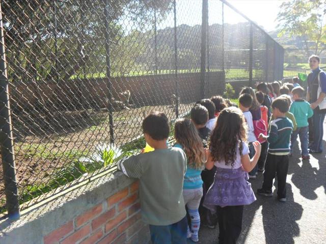 Visita Zoologico _ Pré 2012