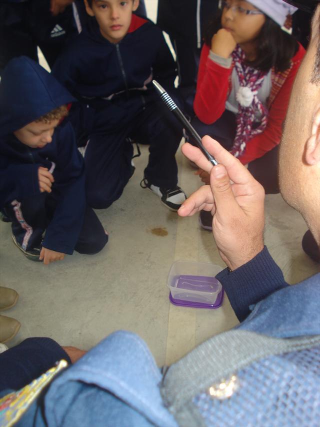 Guarda Mirim - Aula sobre a Dengue.