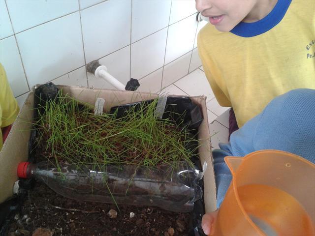 Estudantes realizam a experiência do assoreamento do solo.