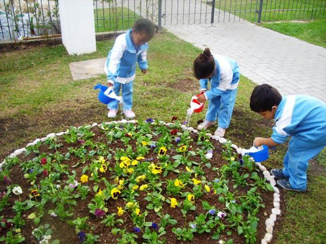 As borboletas sempre pousam nos jardins mais floridos...