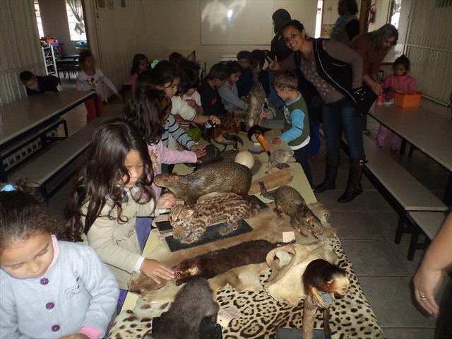 Visita dos animais empalhados para as crianças do CMEI Novo Horizonte