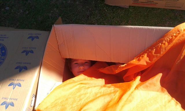 O Pre Brincando com caixas de papelão