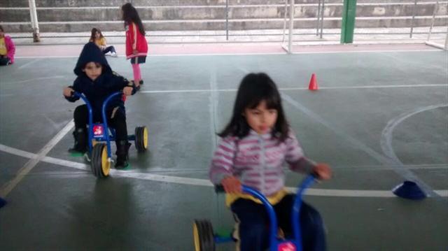 atividades realizadas nas aulas de educação física