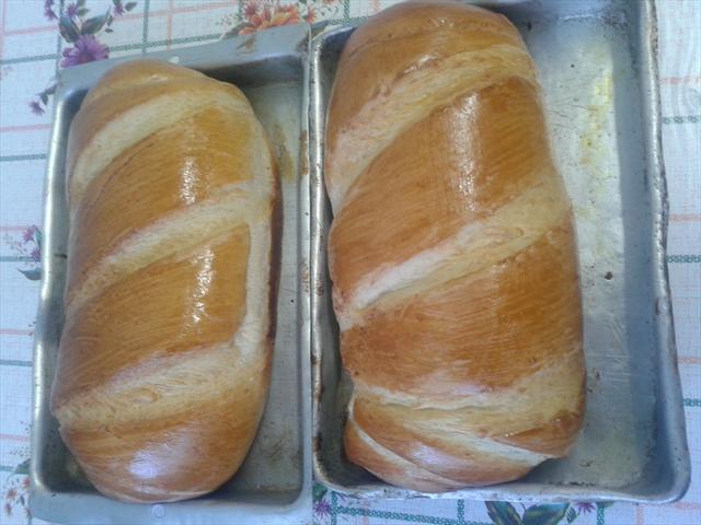 Do Trigo ao Pão