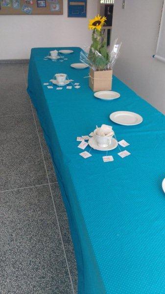 fotos chá pré b
