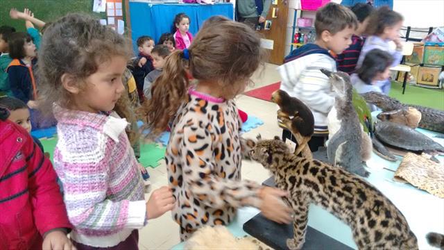 Explorando os animais....