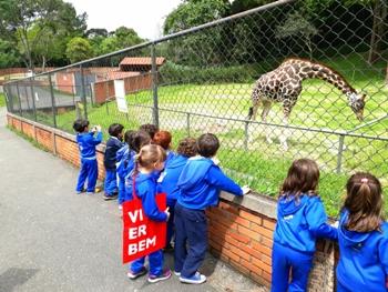 Zoológico Pré 2