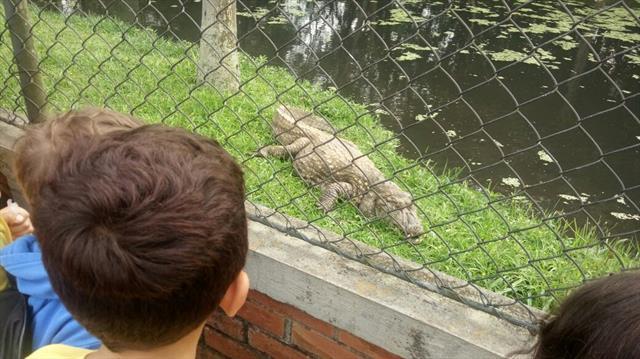 Passeio ao Zoo