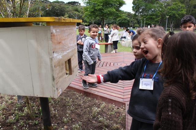 Crianças aprendem sobre o valor das abelhas nativas sem ferrão
