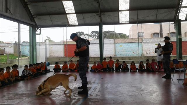Crianças em contato com cães farejadores.