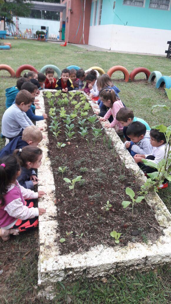 A Horta é das atividades desenvolvidas no CMEI Con