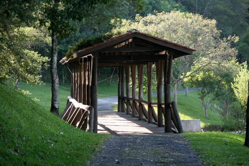 Linhas do Conhecimento aula de campo Parque Passaúna