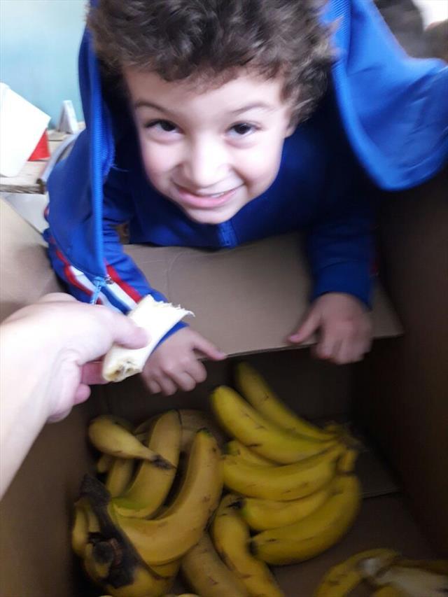 Aprendendo com Sabor - Banana