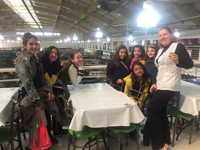 Alunos do 5º ano aprendem sobre alimentação saudável na teoria e vão à prática no Mercado Municipal, através do Programa Linhas do Conhecimento.