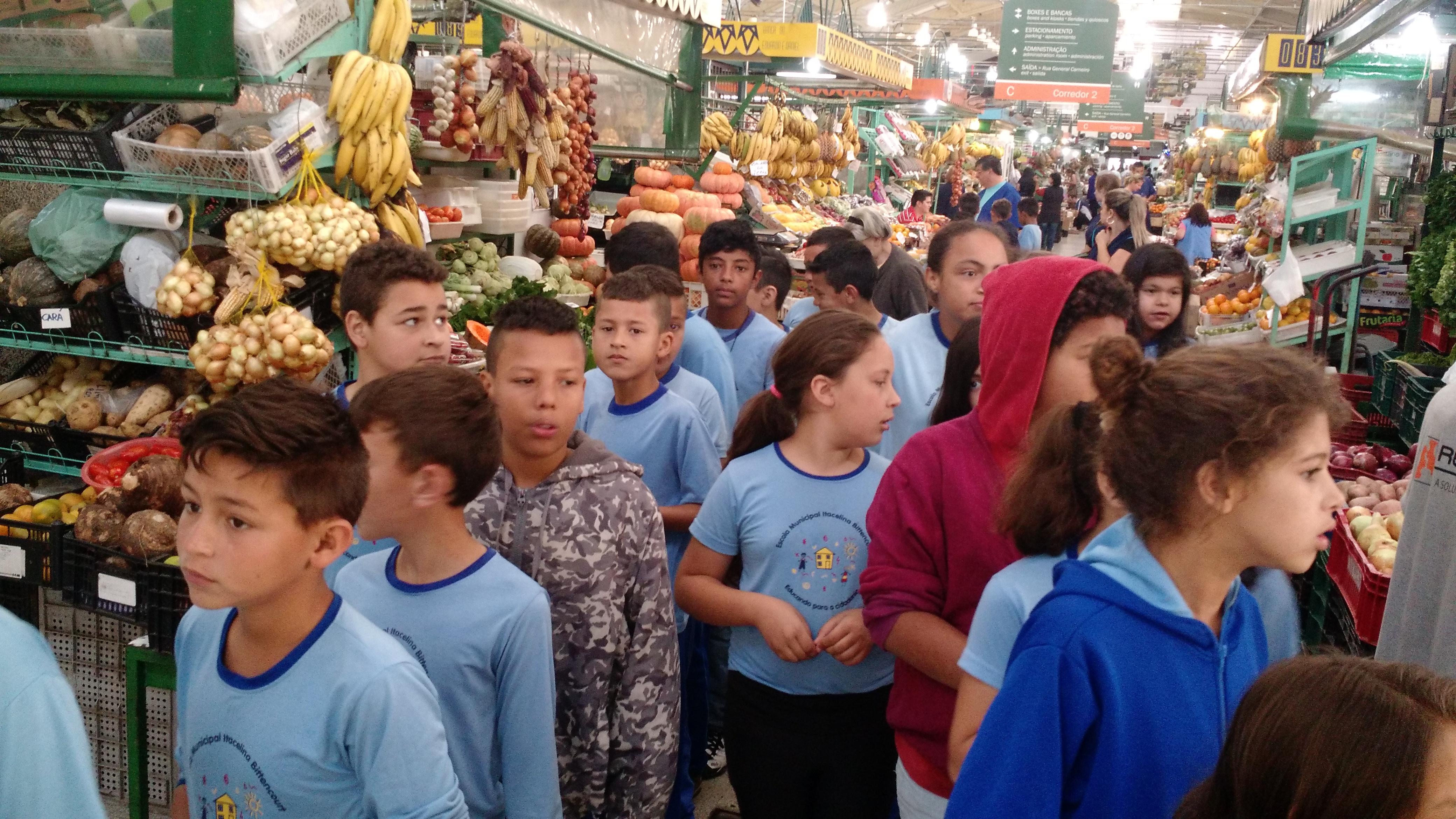 Linhas do Conhecimento Mercado Municipal
