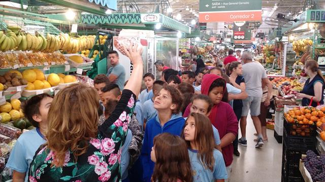 Linhas do Conhecimento no Mercado Municipal