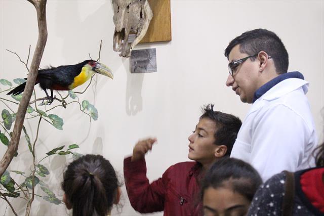 Aula de Campo Museu de História Natural enriquecem trabalhado realizado em sala de aula
