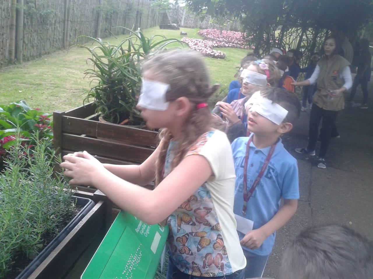 Jardim Botânico - 1º Ano