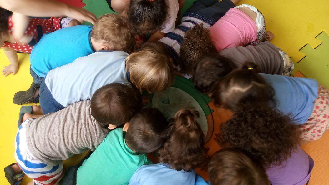 O Maternal IB entrou no mundo de descobertas das cores. E para tornar o aprendizado divertido as professoras trouxeram um experimento que tornou esse momento inesquecível. Fizeram a experiência da explosão das Cores, onde foi usado leite, corante alimentício e detergente. Ao colocar esses ingredientes em contato num recipiente, as cores que e ali estavam deram um baile e as crianças simplesmente amaram vivenciar esse momento. Quando tornamos o aprendizado em descoberta e diversão, nada mais fica entediante.