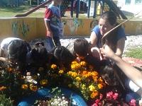 Crianças exploram os jardins do Cmei