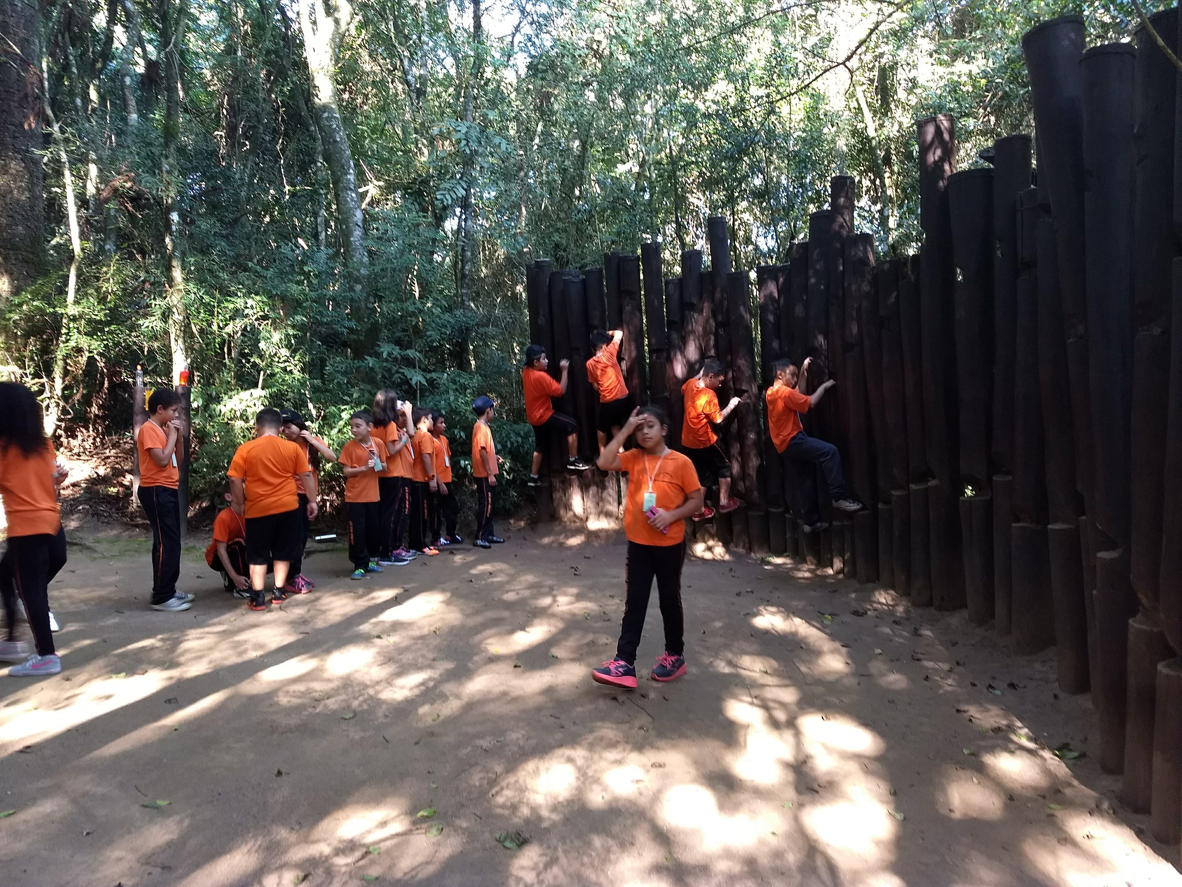 Linhas do Conhecimento  no Bosque Reinhard Maack