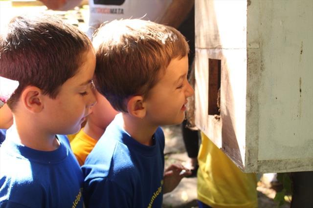 Crianças descobrem a importância das abelhas para o meio ambiente