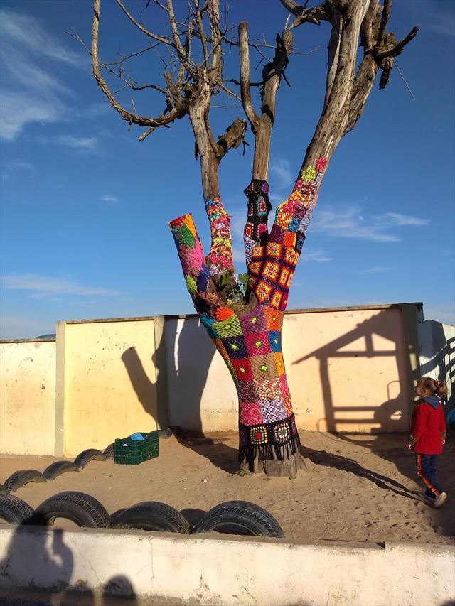 Alunos decoram árvore da escola.