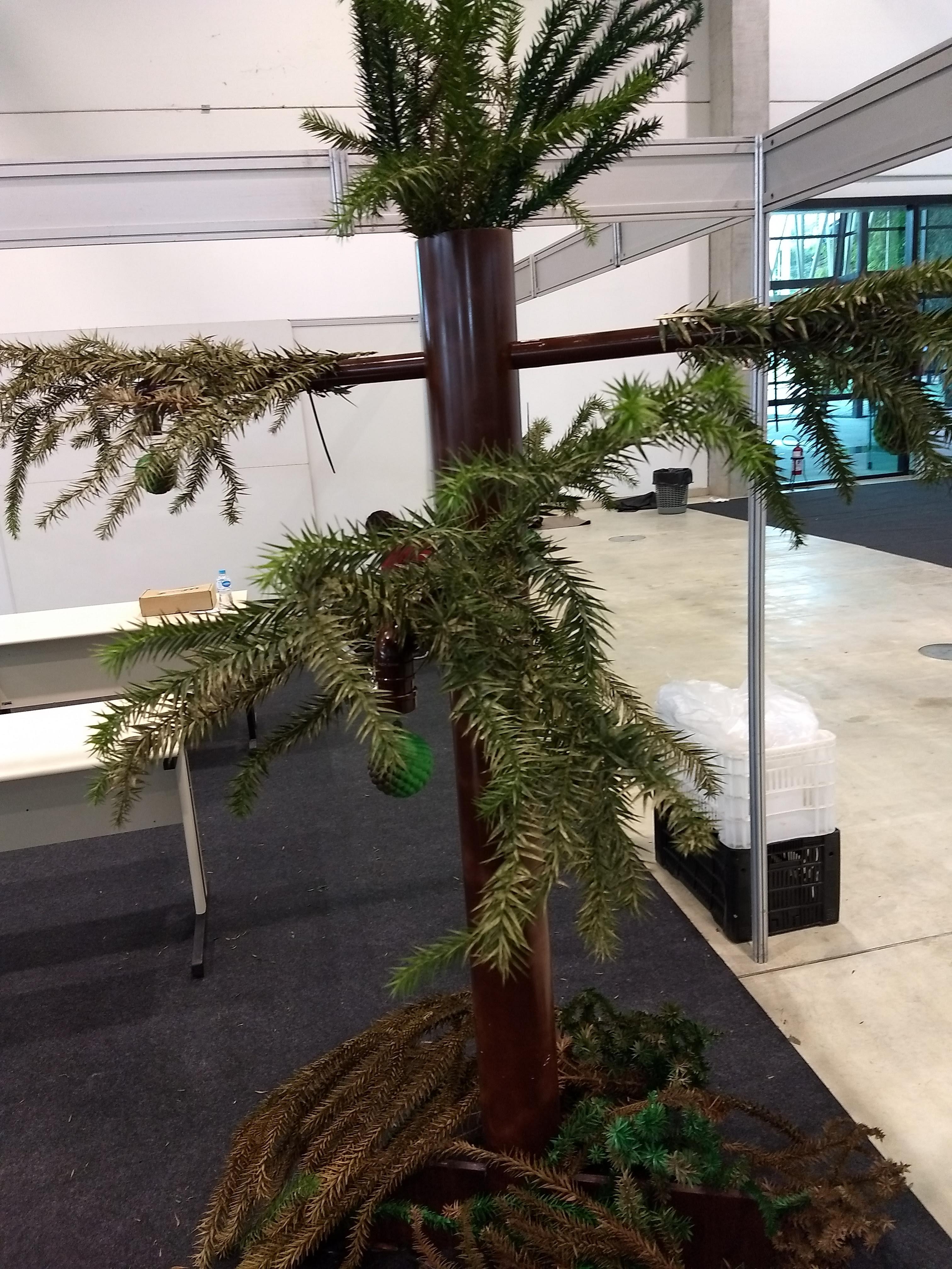 Árvore Robótica 1