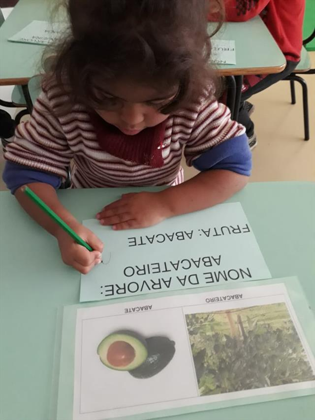 Passeio na Casa da Professora Fabiana 24/08/2018 - Projeto Natureza x Crianças