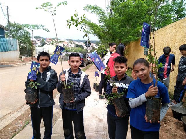Em Pilarzinho planta 30 mudas de árvores