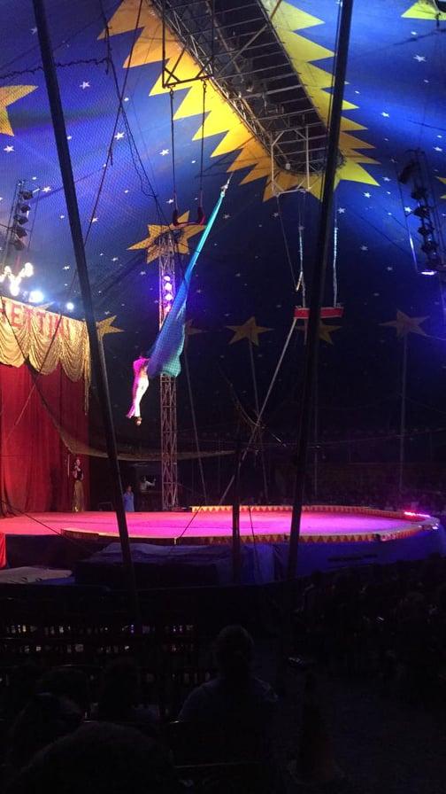 circo 10