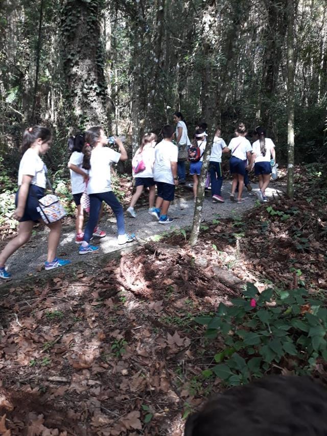 Estudantes da Escola Municipal Dom Manuel D´Elboux participam da aula de campo na Casa Verde