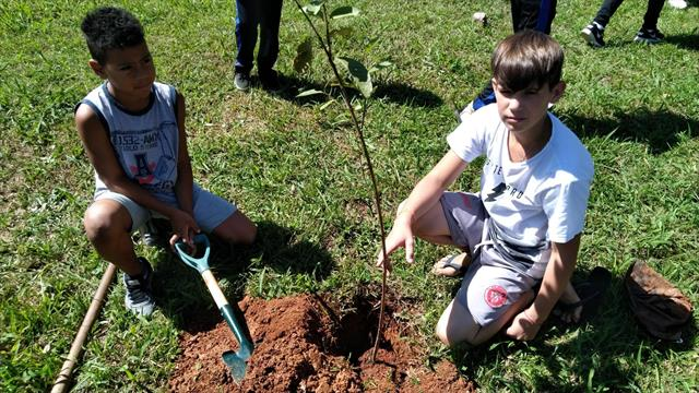 Estudantes plantam oitava árvore na unidade
