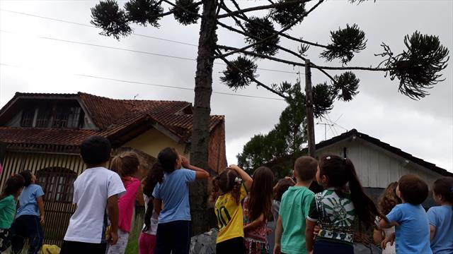 Curitiba faz aniversário e as crianças se desenvolvem com experiências significativas enquanto comemoram