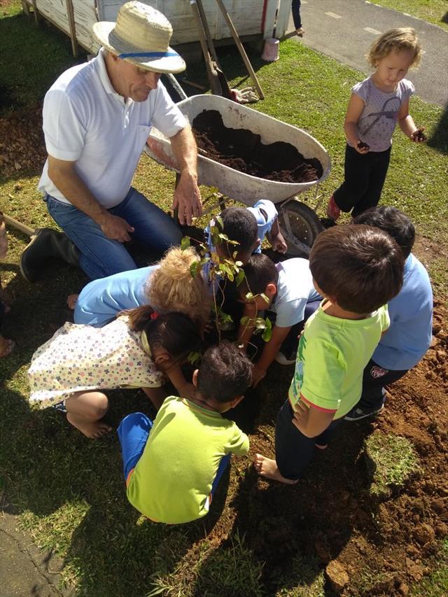 O brincar na Educação Infantil oportuniza muitas p