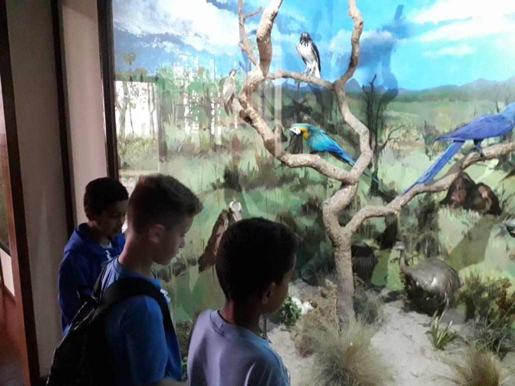 Museu História Natural - EM Foz do Iguaçu