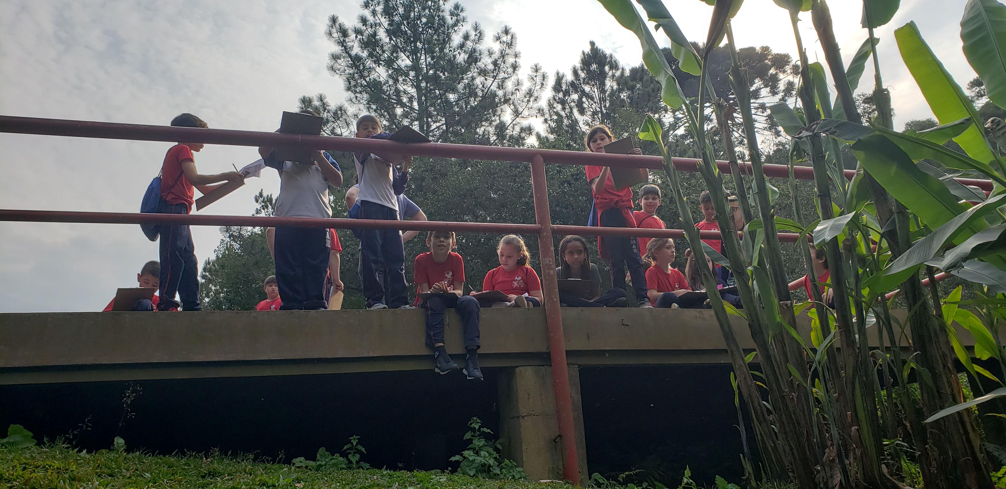 Parque Vista Alegre EM Ana Hella - Linhas do Conhecimento