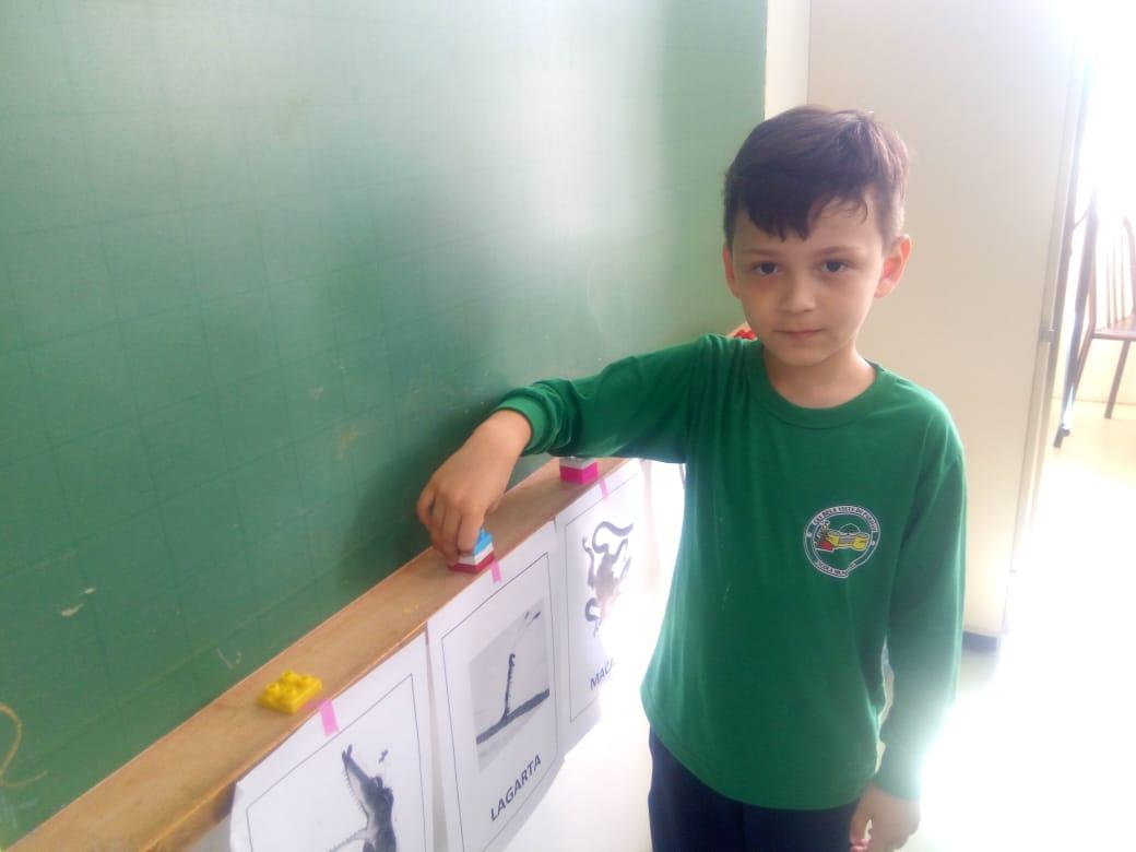 Acompanhamento Pedagógico Matemática