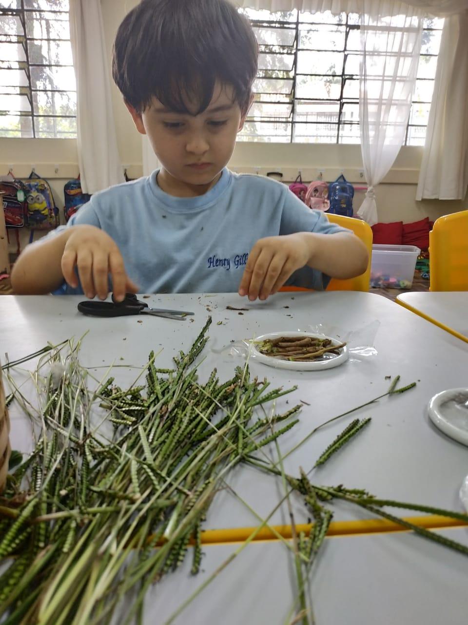 acolhimento na educação infantil