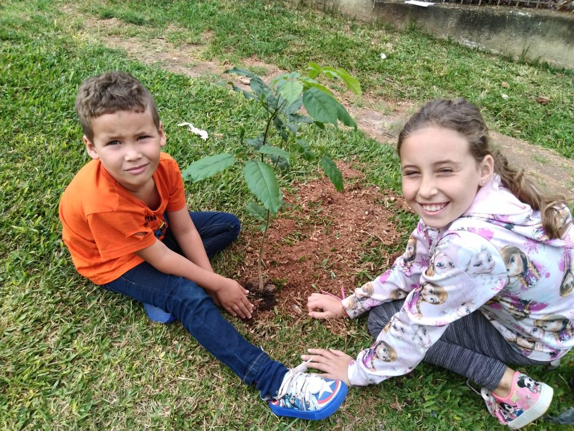 Mais 6 mudas são plantadas, agora em frente ao CMEI Vila Nori