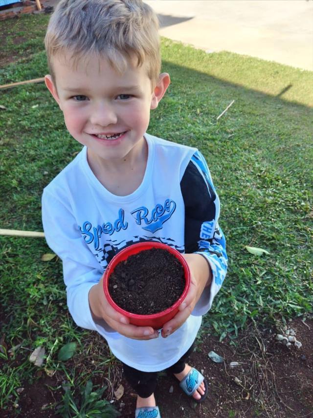 Semeando e observando a germinação da semente.