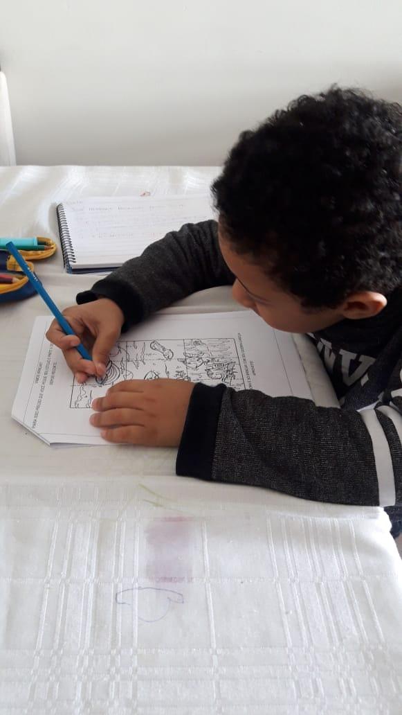 As atividades planejadas pelas professoras quinzen