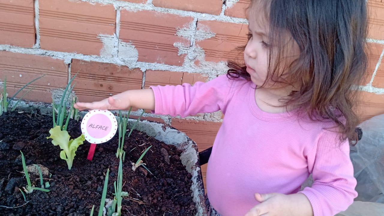 Mão na terra, semente plantada e frutos colhidos..