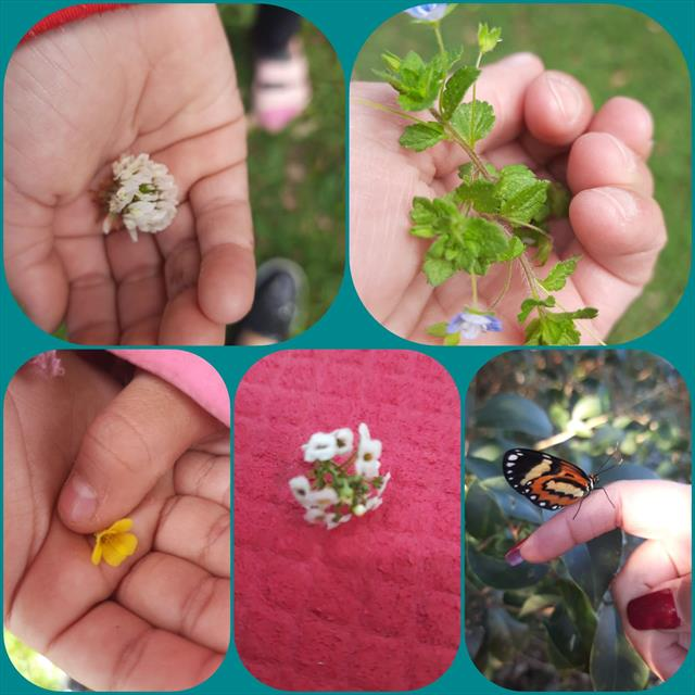 Equipe de Permanência: Criança e Natureza = Encantamento